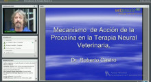 "Video: ""Mecanismos de Acción de la Procaína en la Terapia Neural Veterinaria"""
